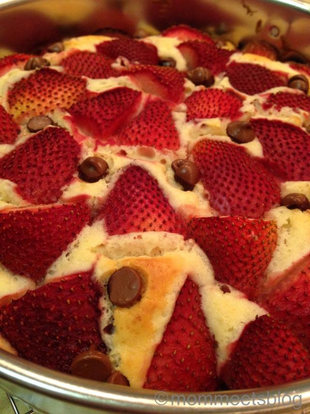 Strawberry Chocolate Chip Cake - Mom Meets Blog